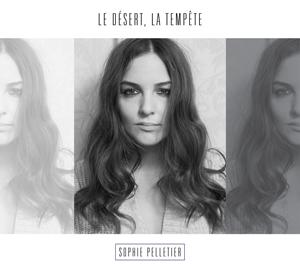 Le désert, la tempête - Sophie Pelletier