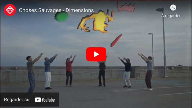 Choses Sauvages - Dimensions